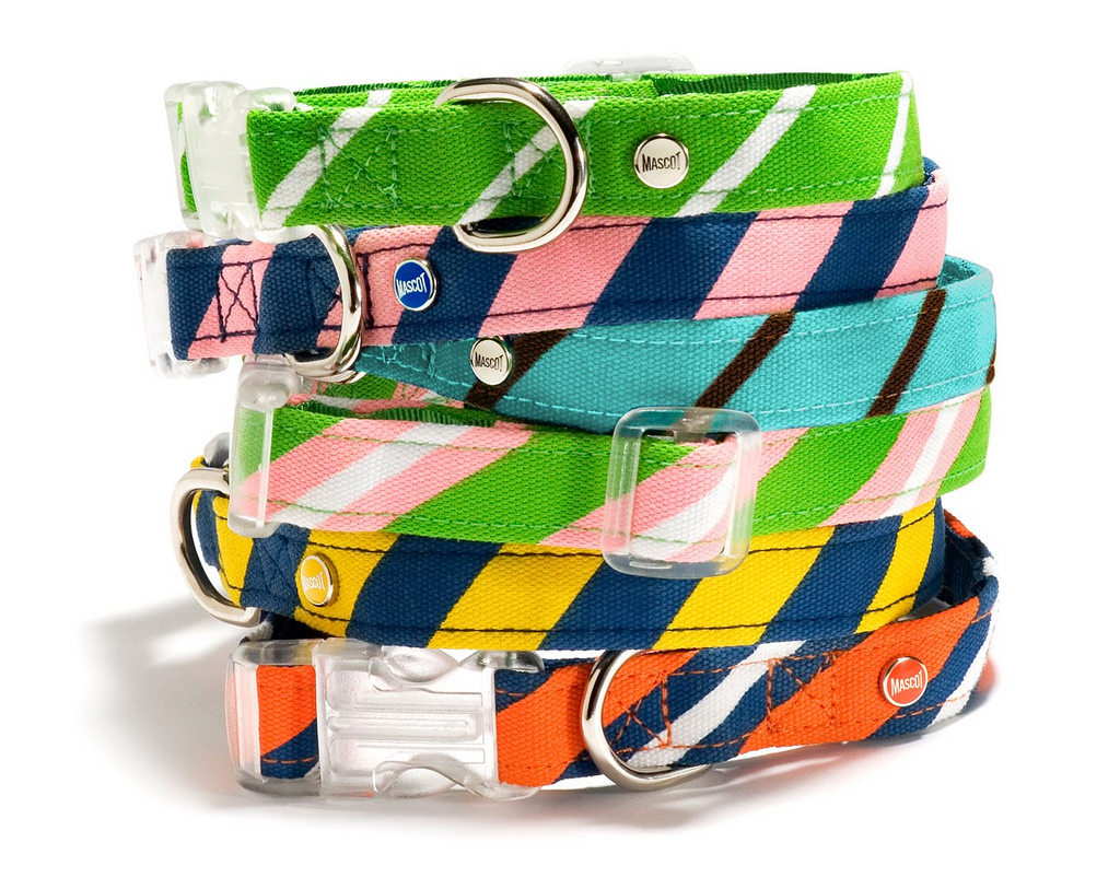 right sized dog collars